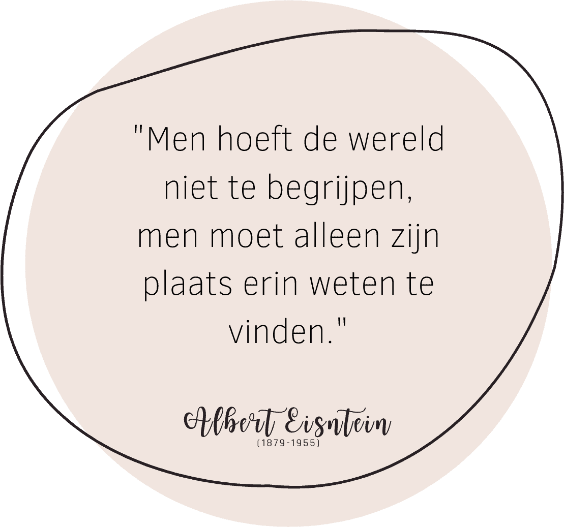 systemisch coach zwolle quote albert einstein